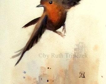 Robin - Robin - gone with the wind - 19 x 49cm - original watercolor - original watercolour -.