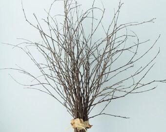 Birch Branches Decorative Birch Bundle of Twenty-Five (25) Wedding Decor Woodland Table Decor