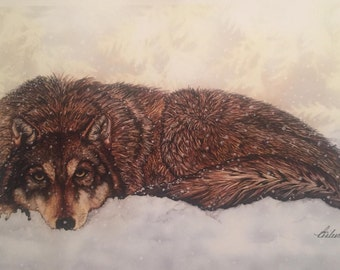 Lone Wolf Pen and Ink Watercolor Painting