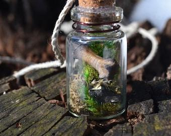 Large Mossy Raccoon Bone Terrarium Bottle Necklace