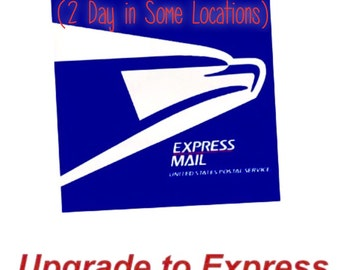 Upgrade to USPS Priority Express Mail