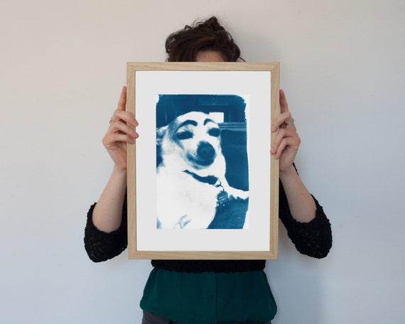 Meme Art, Dog with Eyebrows, Cyanotype Print on Watercolor Paper, A4 size