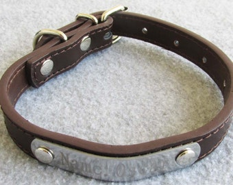 Personalized Pet Dog Collar engraved with pet's information Customized anti-lost dog collar with nameplate