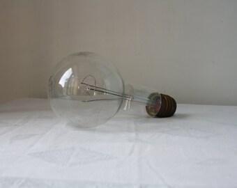 Vintage large Philips light bulb