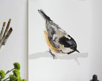 Garden Bird Print - Coal Tit