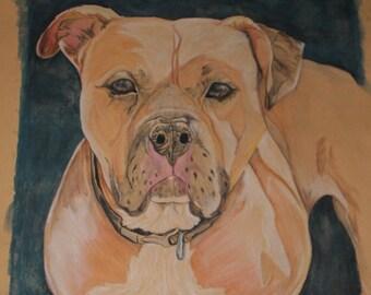 Watercolor Pencil Pet Portrait