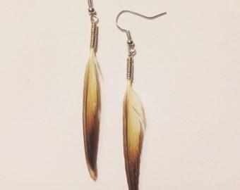 Bird Feather Earrings