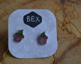 Planted Succulents Cute Earrings plastic shrink ear jewellery