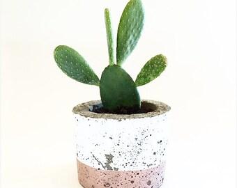Medium Short Concrete Pot