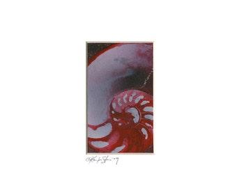 "Sea Shell Watercolor Painting, Ocean, Nautilus Shel art, Originall sea painting ""Nautilus Shell 952"" by Kathy Morton Stanion EBSQ"