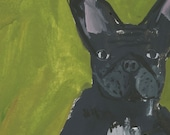 French Bulldog painting || Original gouache painting