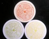 Lemon, Lime & Orange citrus letterpress coasters - Set of 12 (4 each color)