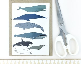 whale temporary tattoos - wildlife body art - narwhal - orca - illustrated fake tattoo