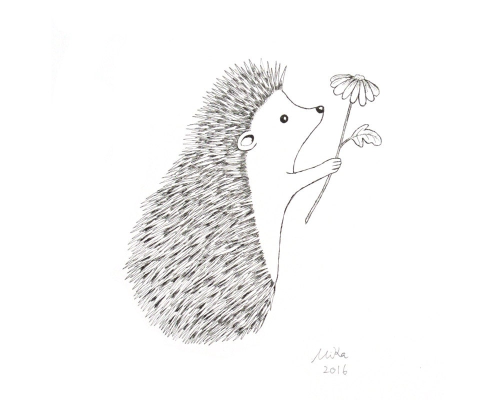 Line Drawing Hedgehog : Simple hedgehog drawing imgkid the image kid