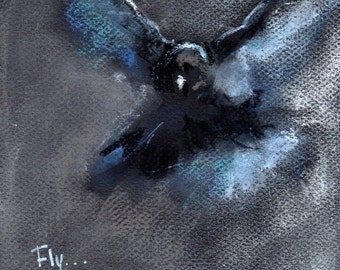 "Original Pastel, ""Fly...Trust Your Wings"" - Bird Art on Black Canson Paper"