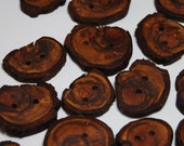 Wooden Buttons, Tree Branch Buttons, Craft Buttons, Plum Wood, Mixed Sizes, Set of 20