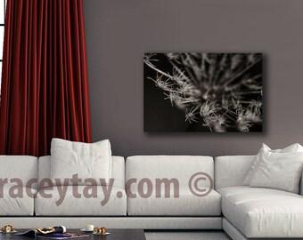 Flower Photography on Canvas, Brown, Beige, Dark, Large Wall Art Canvas Print, Neutral Decor, Bedroom Decor
