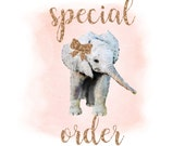 Special Order Bodysuit Only