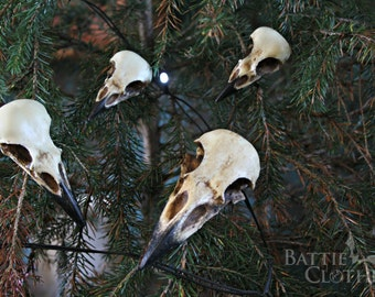 Corvidae collection raven crow magpie jackdaw bird skull decorations goth ornaments