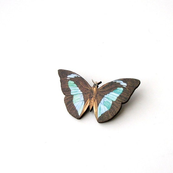 blue banded butterfly brooch pin . butterfly collector brooch pin