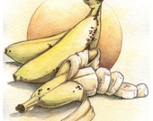 Cut Banana Still Life Watercolor Print