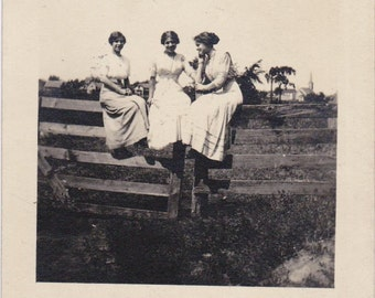 On The Fence- 1910s Antique Photograph- Edwardian Women- Trio of Friends- Found Photo- Real Photo Postcard- RPPC- Paper Ephemera