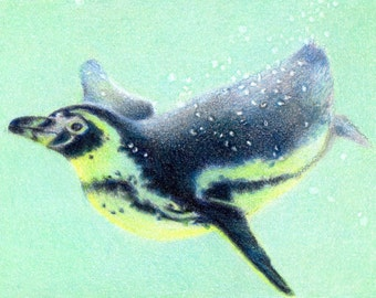 """Original ACEO - Diving Penguin - 2.5"""" x 3.5"""" Unique Artwork - Free Shipping - Portion of Proceeds to Charity"""