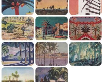 Palm Trees. Collection / Set of 11 Vintage Prints, Postcards -- 1960s-1980s