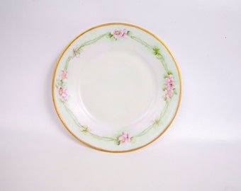 Vintage Thomas Sevres Bavaria Plate Hand Painted Mint Green and Pink Wild Roses