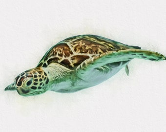 Sea Turtle Wall Art kids room wall art sea turtle wall art sea turtle canvas