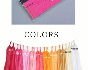 DIY Tassel Garland Kit - You Pick the Colors