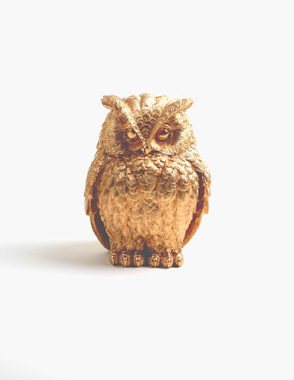 Owl Home Decor The Chubby Little Gold Owl Gold Barn Owl
