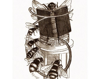 Honey Bee Fabric  | Queen Bee Reads to Workers | Repro Punch Magazine | Vintage Style