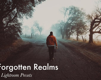 Forgotten Realms - 4 Lightroom Presets INSTANT DOWNLOAD
