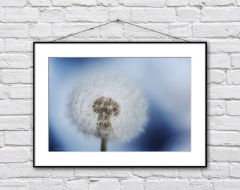 Dandelion photography print, dreamy blue dandelion picture, bathroom wall art, whimsical nursery art, nature photography