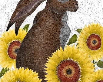 Signed Fine Art Print - Hare with Sunflowers
