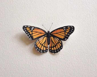 Hand-painted Viceroy Butterfly Specimen