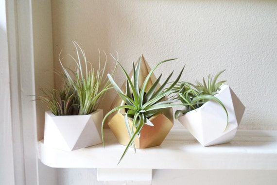 Geometric planters  gift set, air plant holders, teardrop, icosahedron