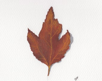 Autumn Leaf - Original Gouache Painting