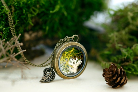 Enchanted forest necklace, locket real moss, terrarium necklace, lichen woodland vintage antique brass