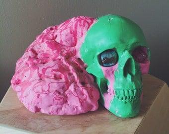 Leaky Brains Skull