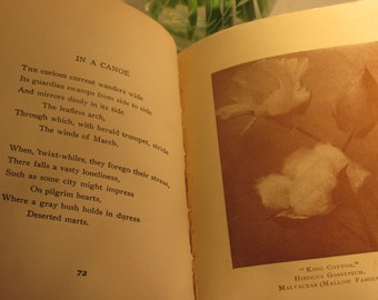 Antique Rare Book Lyrics From Cottonland McNeill 1922 Copyright Stone Publishing Old South Poetry Uncle Remus Style
