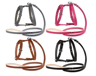 Leather Dog Harness and Leash Set Puppy Small Medium Large Pink Gray Black Brown
