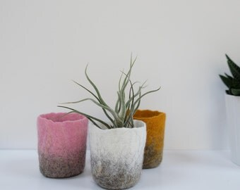 Felted pot - indoor planter - Home decoration - wool felt - airplant holder - small planter - gift for her - SALE