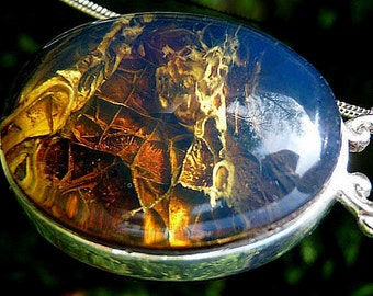 """Dominican Amber & Jet 925 Sterling Silver Pendant and 925 Sterling Silver 20"""" Snake Chain"""