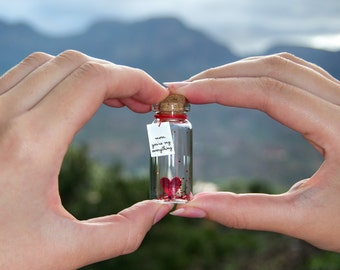 mom, dad, son, daughter, grandma, grandpa, sister, brother, friend..., you're my everything. Tiny message in a bottle. Miniatures. Gift.