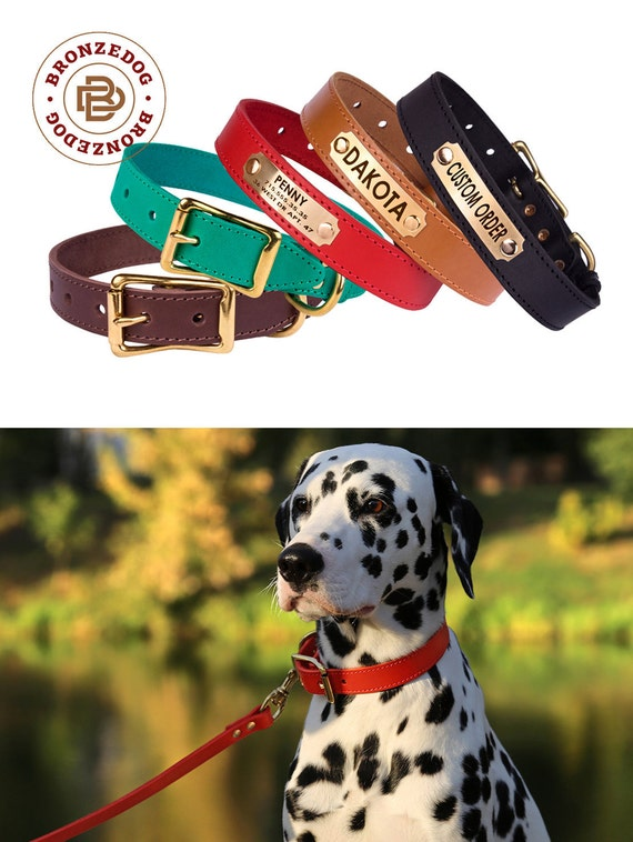 Dog Collar Leather Personalized Brass Buckle Red Brown Black Green