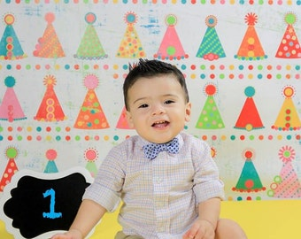 Party Hats -  Photography Backdrop - Photo Prop