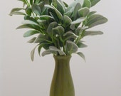 Lambs' Ears, Green Ceramic Vase, Table Centerpiece, Housewarming Gift, Small Floral Arrangement, Livingroom decor