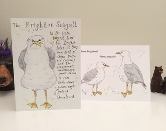 Brighton Seagull or Hove Actually Greetings Cards